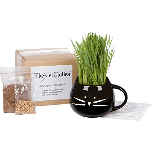 HOLIDAY GIFT SET - 100% Organic pet grass kit/cat grass kit with cat planter. Natural hairball control and remedy for cats. Natural digestive aid. Includes planter, Organic seed mix and organic soil.