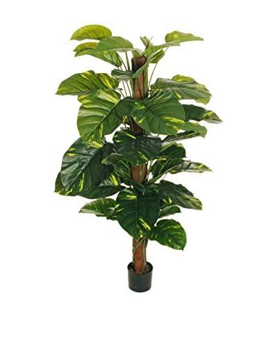 Forever Greens!  Pianta Artificiale Pothos Tree Verde 150 cm