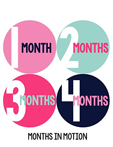 Months in Motion 291 Monthly Baby Stickers Baby Girl Months 1-12 Milestone
