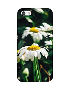 Mobifry Back case cover for Apple iPhone 5s Mobile ( Printed design)