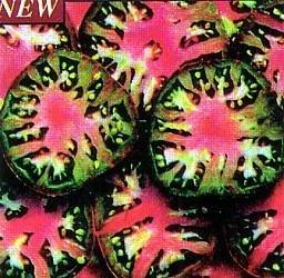 Black Sea Man Tomato 10 Seeds - Heirloom