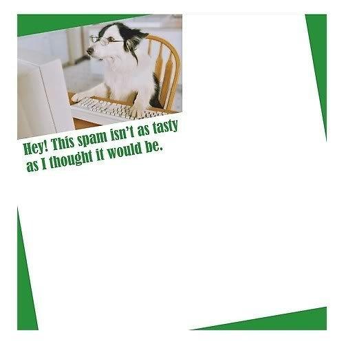 littlegifts-2-pack-sticky-notes-internet-spam-by-littlegifts-inc