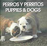 Perros Y Perritos/Puppies & Dogs (Spanish Edition)