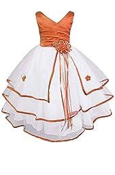 AMJ Dresses Inc Little Girls\' Orange Flower Girl Pageant Dress S138 Sz 2