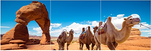 obella-framed-ready-to-hang-3-panels-canvas-print-wall-art-camel-caravan-in-desert