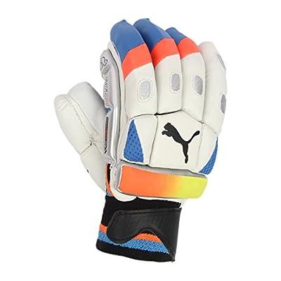 Puma Unisex Blue Batting Gloves