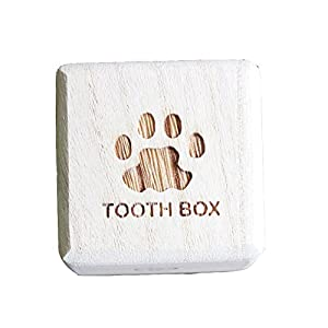 イロハ 足型(犬、猫、大人歯箱、乳歯ケース)桐箱