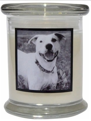 Aroma Paws 362 Breed Candle 12 Oz. Jar - Pitbull