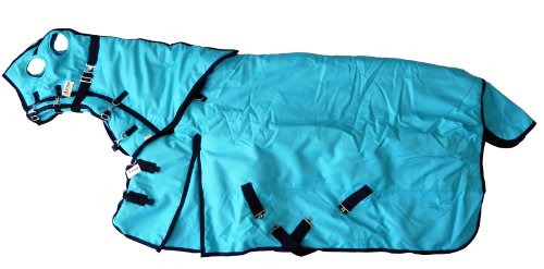 "1200D Heavy Weight Waterproof Horse Blanket And Hood Combo Turquoise, 84"" L front-1011917"