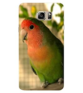 ColourCraft Cute Parrot Design Back Case Cover for SAMSUNG GALAXY NOTE 6