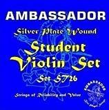 Ambassador Student Violin Silver Plate Set