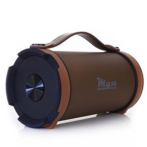 StreetRocker-Bluetooth-Lautsprecher-mit-Akku-Leistungsstarkes-Soundsystem