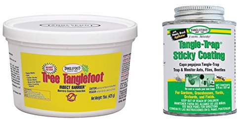 bundle-2-products-tanglefoot-tree-insect-barrier-tub-8-ounce-tangle-trap-brush-on-sticky-trap-coatin