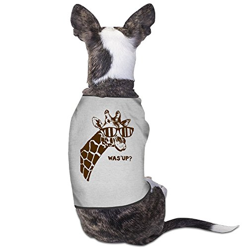 Theming SCHRUTE FARMS BEETS Dog Vest (California Natural Dog Food Puppy compare prices)