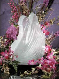 Reusable Swan Ice Sculpture Mold (Ice Sculptures compare prices)