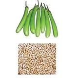 alkarty green brinjal seeds 20 nos.