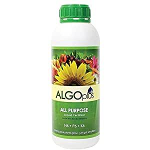 Algoflash All Purpose Formula