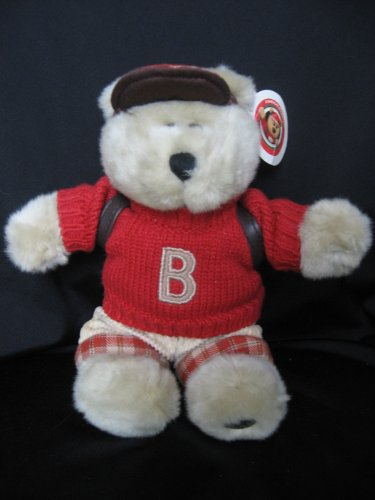 41gRdgNU2HL Cheap Price 2002 Starbucks Bearista 10 Plush School Boy Bear