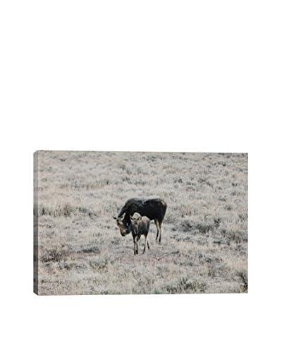 iCanvas Art Montana Wildlife I By Christopher Kerksieck Canvas Print
