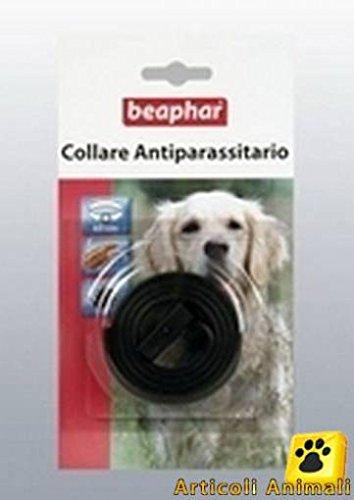 collare-antiparassitario-per-cani-contro-pulci-e-zecche