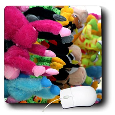 Recycle Stuffed Animals front-716287
