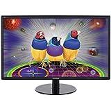 ViewSonic VX2209 54,6 cm (21,5 Zoll) LED-Monitor (DVI, VGA, 5ms Reaktionszeit) schwarz