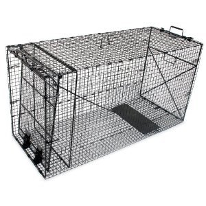Freeshipping Wild Dog Trap, Coyote Trap, Fox Trap 50