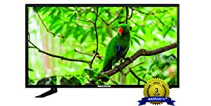 Nacson NS2616 61 cm ( 24 )HD Ready (FHR) LED Television With 1+2 Year Extended Warranty