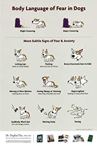 (12x18) Body Language of Fear in Dogs Animal Poster