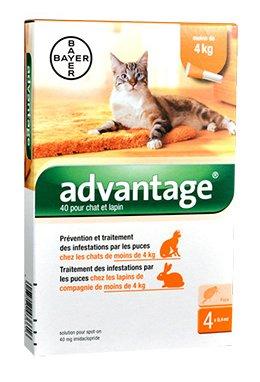 bayer-advantage-40-solution-antipuce-pour-chat-et-lapin-de-moins-de-4kg-4-pipettes
