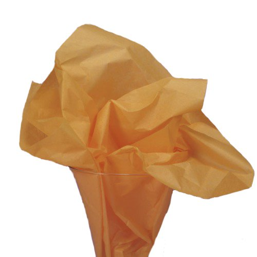 Dress My Cupcake DMC79441 25-Piece Tissue Paper, 20 by 14-Inch, Orange