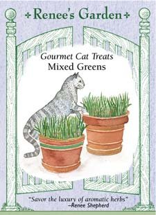 Gourmet Cat Treats - Mixed Greens Seeds