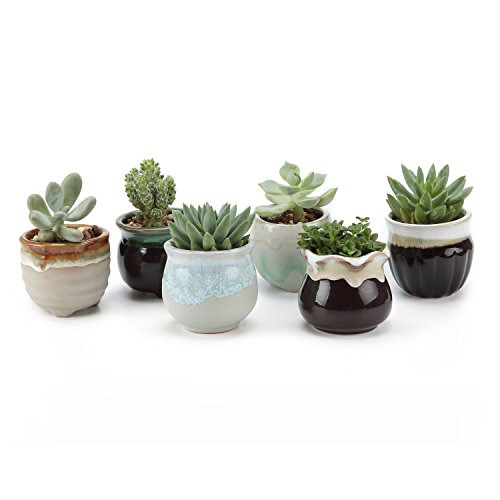 t4u-25-inch-ceramic-flowing-glaze-blackwhite-base-serial-set-sucuulent-plant-pot-cactus-plant-pot-fl