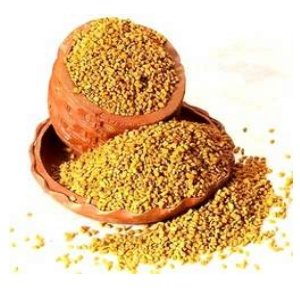 15 Lbs Wholesale Organic Fenugreek Seeds Raw Food (Gmo Free, Fresh & Chemical Free) Methi, Hulbah, Greek Hay Seed