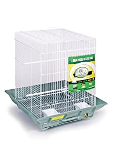 Prevue Hendryx SP850G/W Clean Life Cockatiel Cage, Green and White
