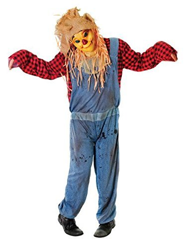 Adult Scarecrow Smiling Face Halloween Wizard Of Oz Fancy Dress Costume