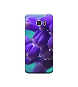 EPICCASE Premium Printed Mobile Back Case Cover With Full protection For Samsung Galaxy S7 Edge (Designer Case)