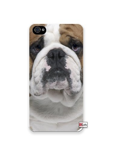 Premium Direct Print Cute Bulldog Dog iphone 6 Quality Hard Snap On Case for iphone 6/Apple iphone 6 - AT&T Sprint Verizon - White Case PLUS Bonus RCGRafix The Best Iphone Business Productivity Apps Review Guide