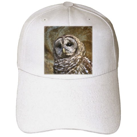 Angel Wings Designs Wildlife - Barn Owl fine art image - home décor - Caps
