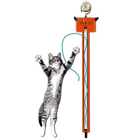 moody-pet-fling-ama-string