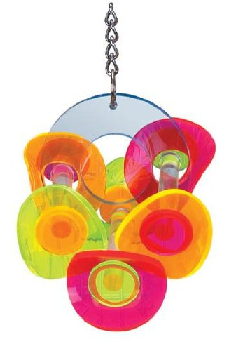 Brainy Bird Whirligig Series Wavy Rings Bird Toy