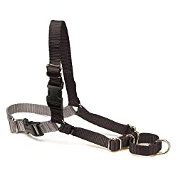 Premier Easy Walk Pet Harness, Large, Black/Silver