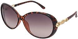 Aks Butterfly Women Sunglasses (Aks146)