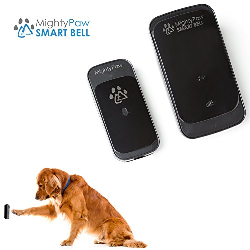 how to train your dog to ring a potty bell