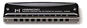 HAMMOND ハモンド 10穴ハーモニカ HAMMOND HA-20 C調