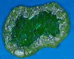 Rocky Pond A Swampy 28mm Miniature Terain