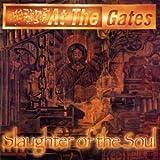 Slaughter of the Soul [Vinyl]