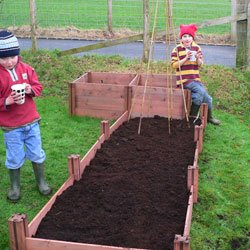 FSC Wooden Economy Raised Bed - Single Layer