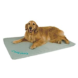 Cool Bed III - Large Cooling, Cushioning Waterbed for your Dog by K&H Manufacturing, Inc.