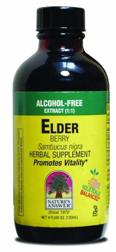 Natures Answer ElderBerry Extract (120ml, Alcohol Free)